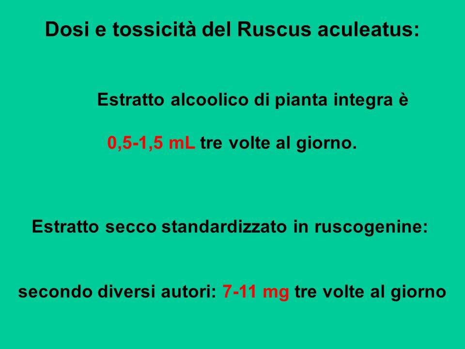 Dosi e tossicità del Ruscus aculeatus: Estratto alcoolico di pianta integra è 0,5-1,5 mL tre volte al giorno. Estratto secco standardizzato in ruscoge