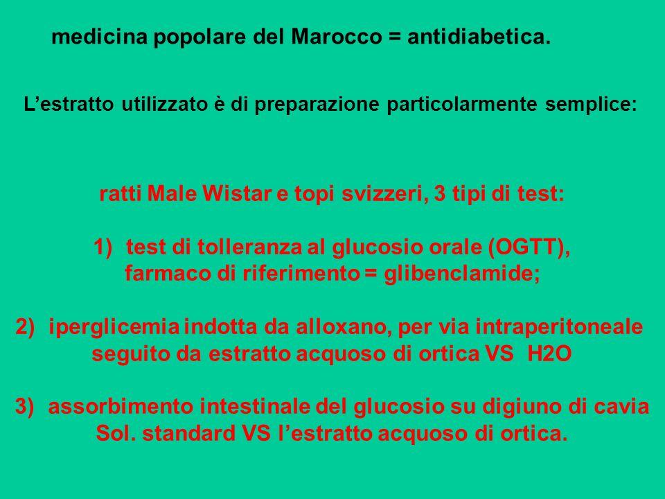medicina popolare del Marocco = antidiabetica. Lestratto utilizzato è di preparazione particolarmente semplice: ratti Male Wistar e topi svizzeri, 3 t