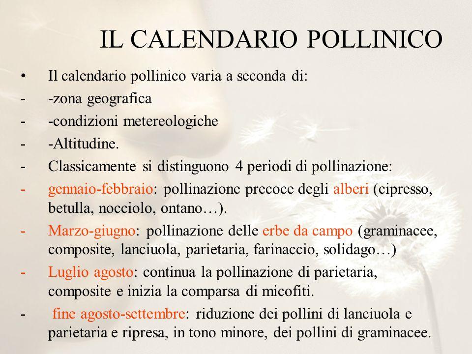 Il calendario pollinico varia a seconda di: --zona geografica --condizioni metereologiche --Altitudine. -Classicamente si distinguono 4 periodi di pol
