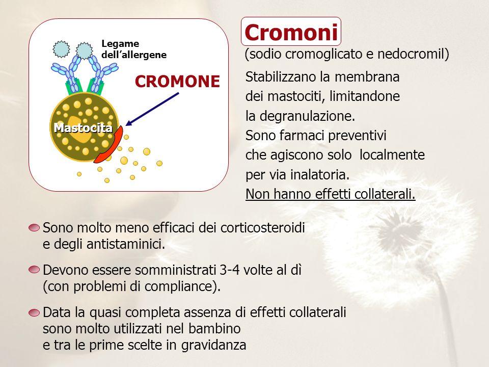 Stabilizzano la membrana dei mastociti, limitandone la degranulazione. Sono farmaci preventivi che agiscono solo localmente per via inalatoria. Non ha