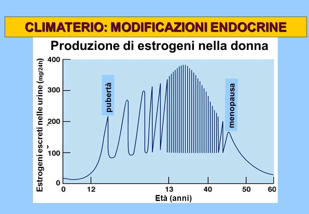 Produzione di estrogeni nella donna pubertà menopausa Età (anni) Estrogeni escreti nelle urine ( mg/24h ) CLIMATERIO: MODIFICAZIONI ENDOCRINE