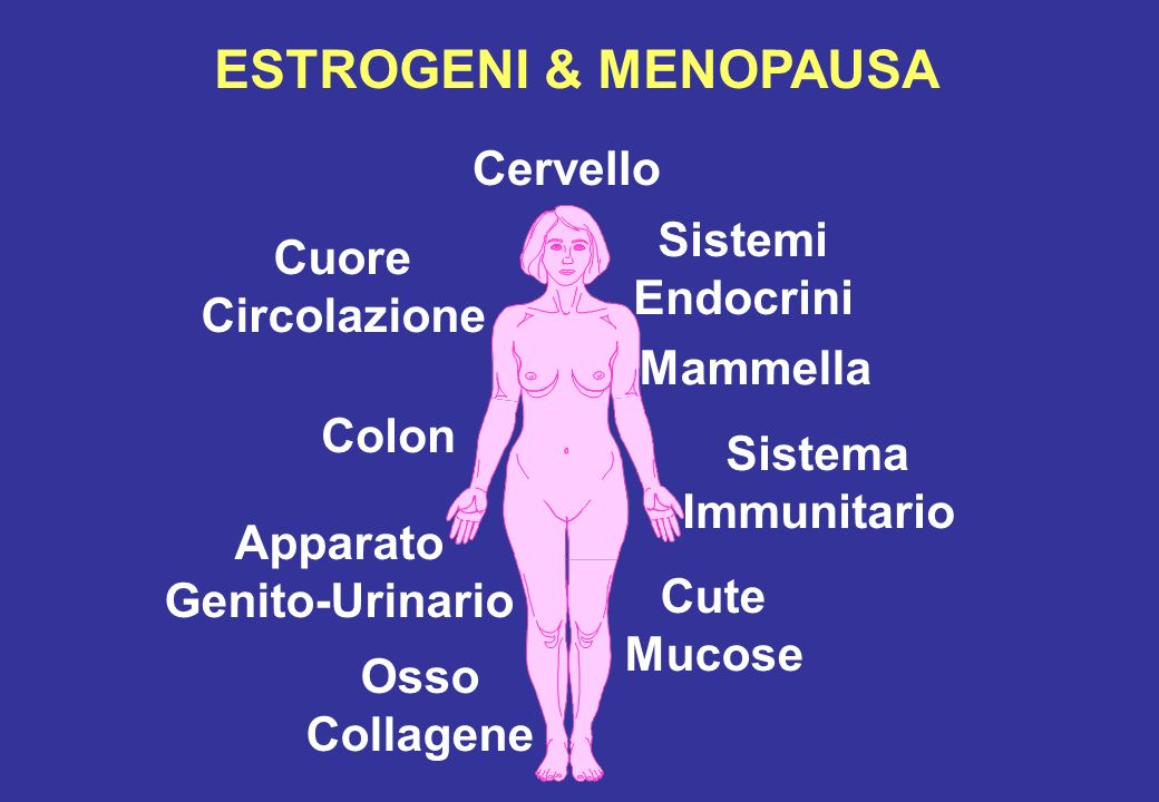 ESTROGENI & MENOPAUSA Cervello Cute Mucose Cuore Circolazione Osso Collagene Sistema Immunitario Apparato Genito-Urinario Mammella Sistemi Endocrini C