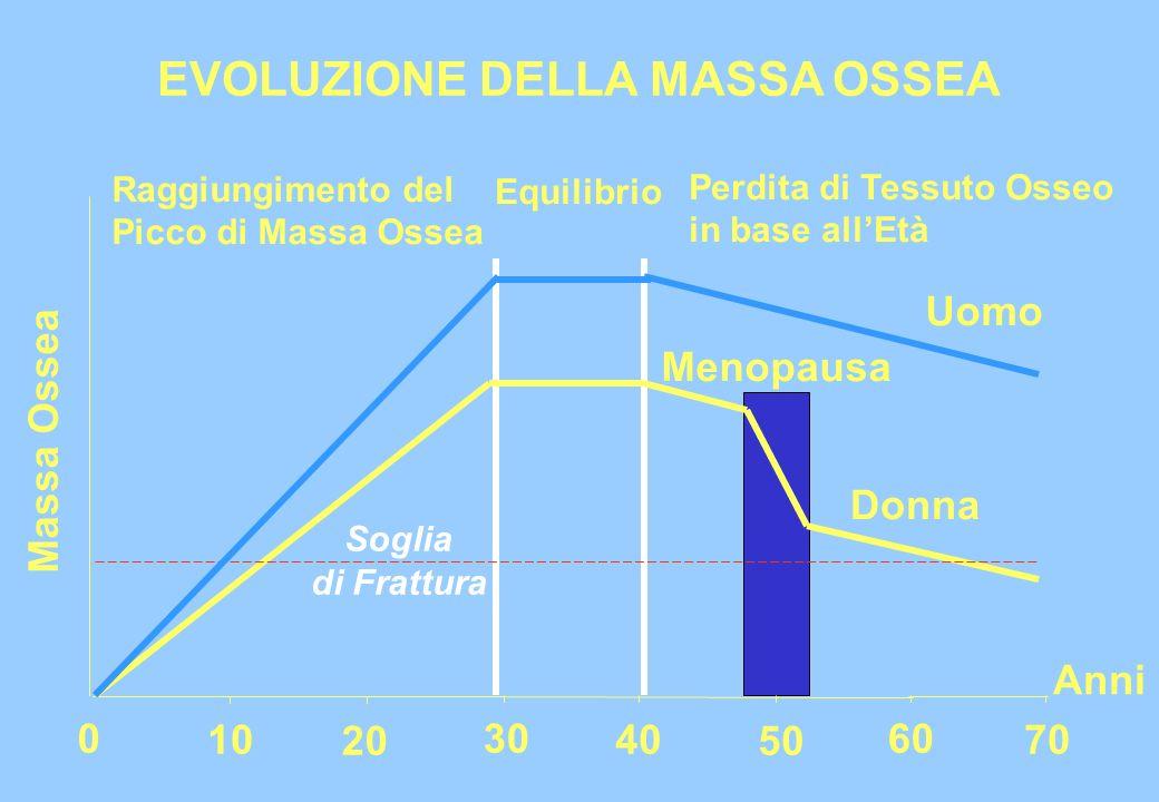 EVOLUZIONE DELLA MASSA OSSEA Massa Ossea 0 10 20 30 40 50 60 70 Anni Equilibrio Raggiungimento del Picco di Massa Ossea Perdita di Tessuto Osseo in ba