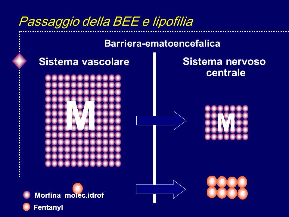 Passaggio della BEE e lipofilia Sistema vascolare Barriera-ematoencefalica Sistema nervoso centrale F F F F F F F F M M F Fentanyl Morfina molec.idrof