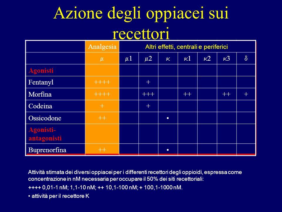 Analgesia 1 2 1 2 3 Agonisti Fentanyl+++++ Morfina+++++++++ + Codeina++ Ossicodone++ Agonisti- antagonisti Buprenorfina++ Azione degli oppiacei sui recettori Altri effetti, centrali e periferici Attività stimata dei diversi oppiacei per i differenti recettori degli oppioidi, espressa come concentrazione in nM necessaria per occupare il 50% dei siti recettoriali: ++++ 0,01-1 nM; 1,1-10 nM; ++ 10,1-100 nM; + 100,1-1000 nM.