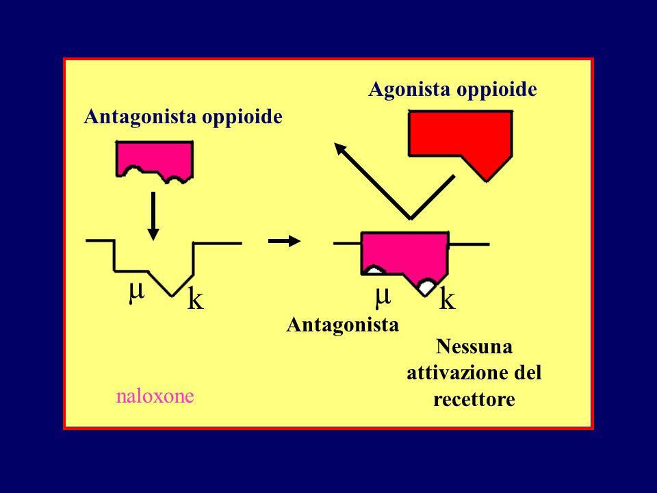 Antagonista oppioide Agonista oppioide Antagonista Nessuna attivazione del recettore µ µ kk naloxone