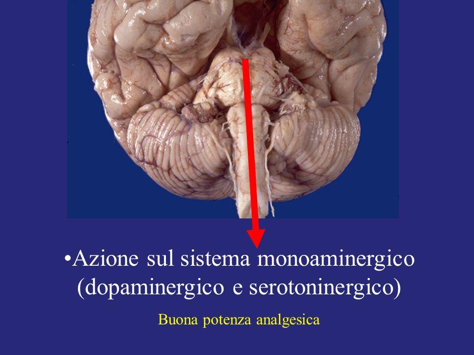 Azione sul sistema monoaminergico (dopaminergico e serotoninergico) Buona potenza analgesica