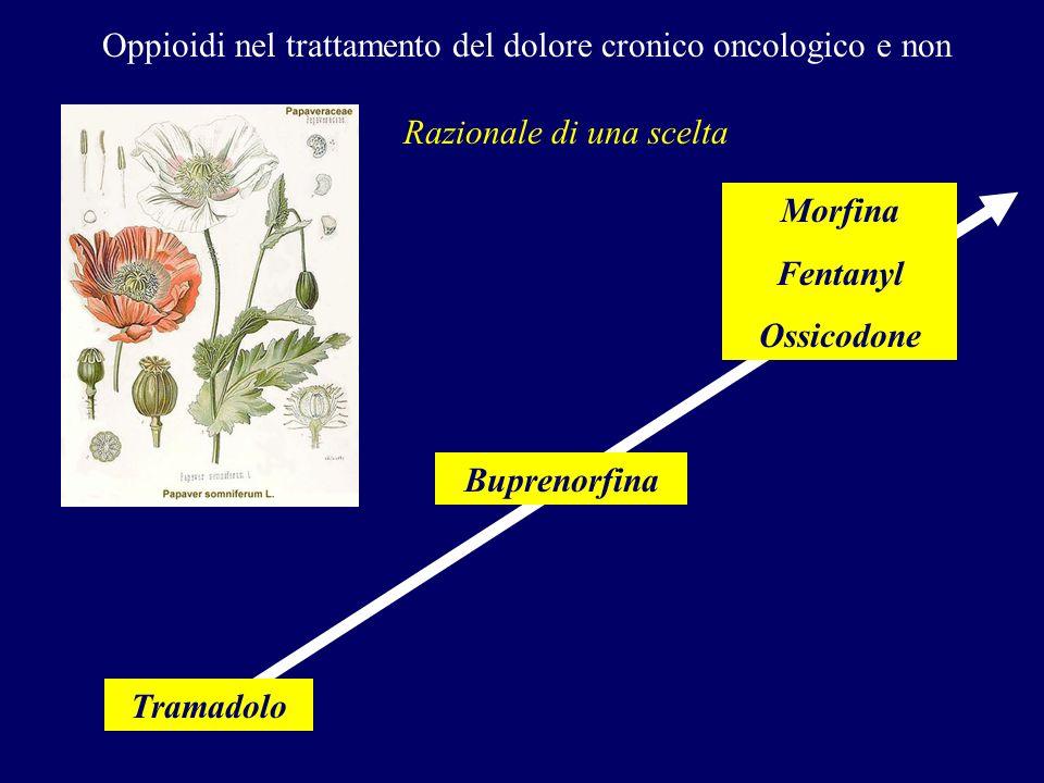 Oppioidi nel trattamento del dolore cronico oncologico e non Razionale di una scelta Tramadolo Buprenorfina Morfina Fentanyl Ossicodone