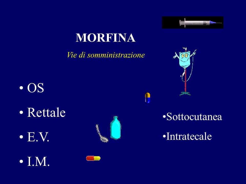 MORFINA Vie di somministrazione OS Rettale E.V. I.M. Sottocutanea Intratecale