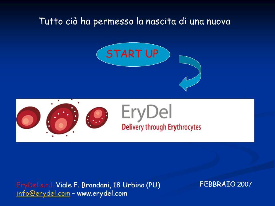 FEBBRAIO 2007 Tutto ciò ha permesso la nascita di una nuova START UP EryDel s.r.l. Viale F. Brandani, 18 Urbino (PU) info@erydel.cominfo@erydel.com –
