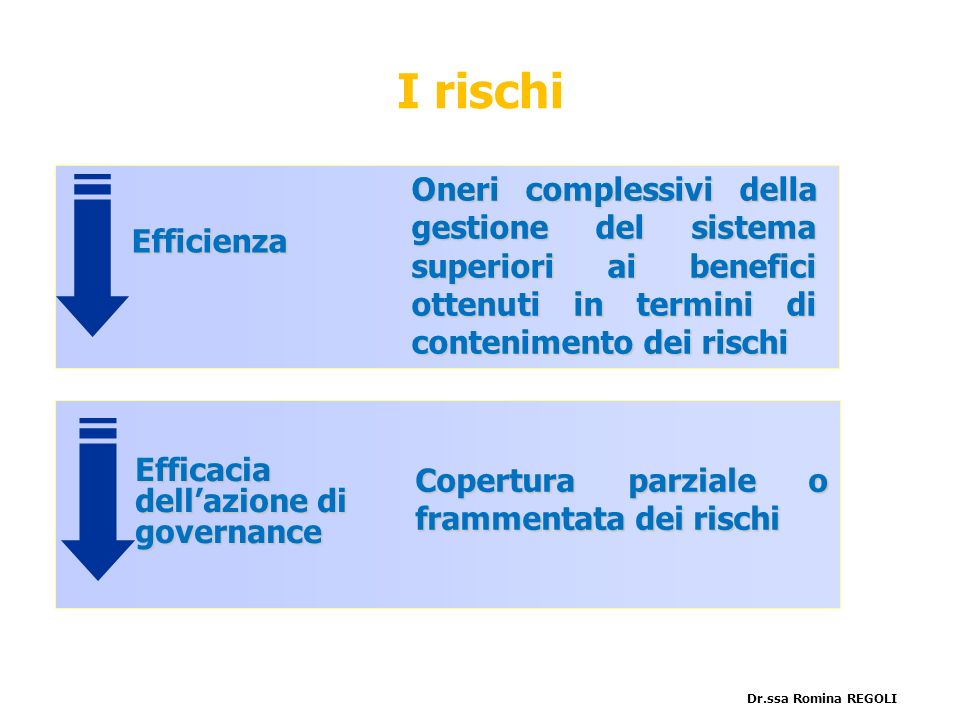 Efficienza Efficacia dellazione di governance Oneri complessivi della gestione del sistema superiori ai benefici ottenuti in termini di contenimento d