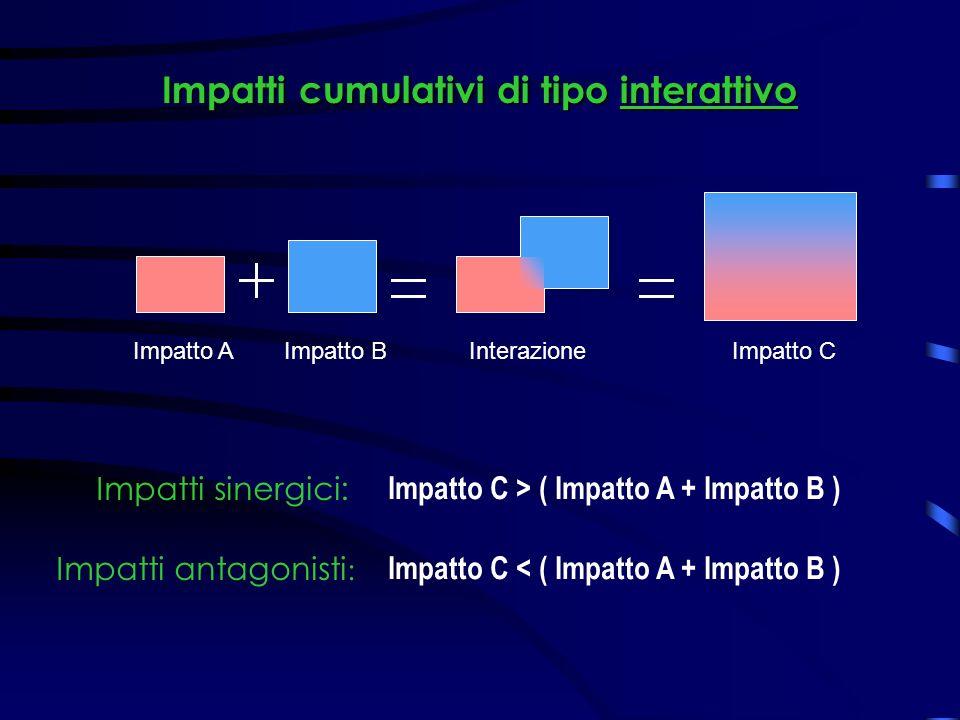 Impatti cumulativi di tipo interattivo Impatto CInterazioneImpatto BImpatto A Impatto C > ( Impatto A + Impatto B ) Impatti sinergici: Impatto C < ( Impatto A + Impatto B ) Impatti antagonisti :