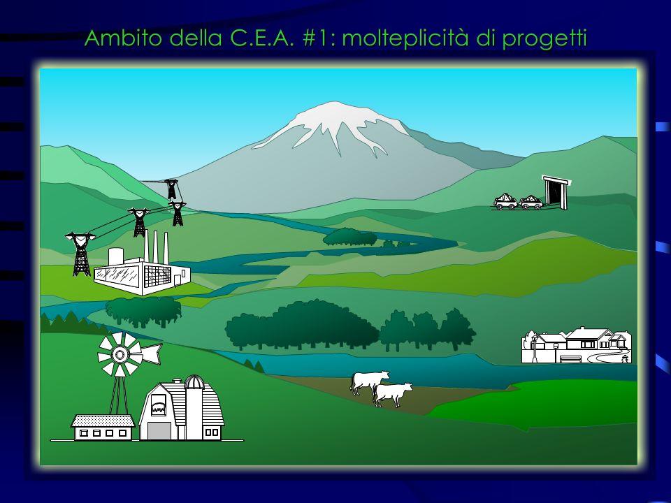 Ambito della C.E.A. #1: molteplicità di progetti