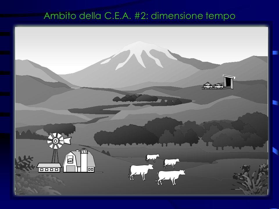 Ambito della C.E.A. #2: dimensione tempo