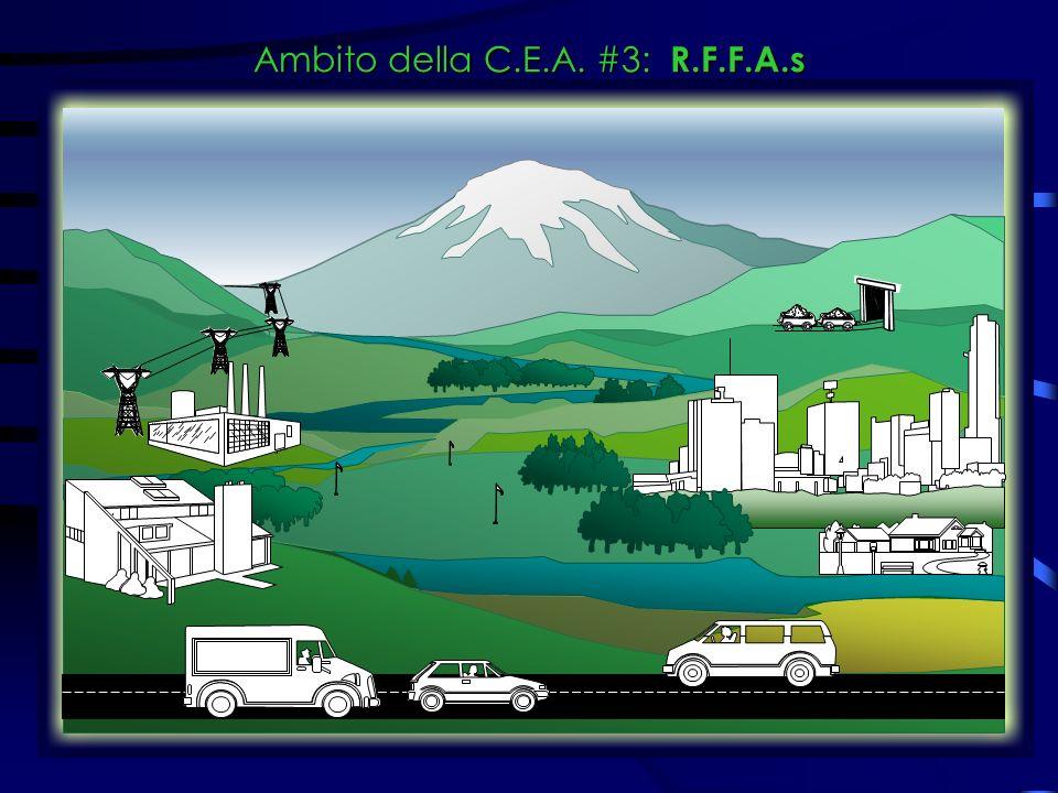 Ambito della C.E.A. #3: R.F.F.A.s
