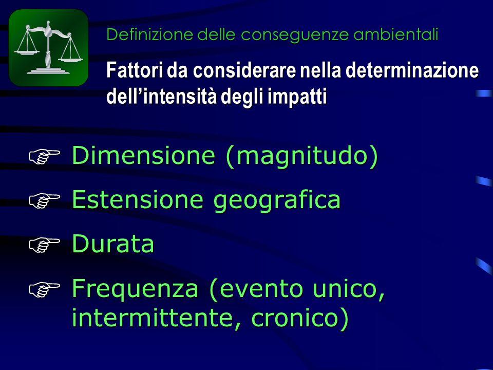 Definizione delle conseguenze ambientali Dimensione (magnitudo) Dimensione (magnitudo) Estensione geografica Estensione geografica Durata Durata Frequenza (evento unico, intermittente, cronico) Frequenza (evento unico, intermittente, cronico) Fattori da considerare nella determinazione dellintensità degli impatti