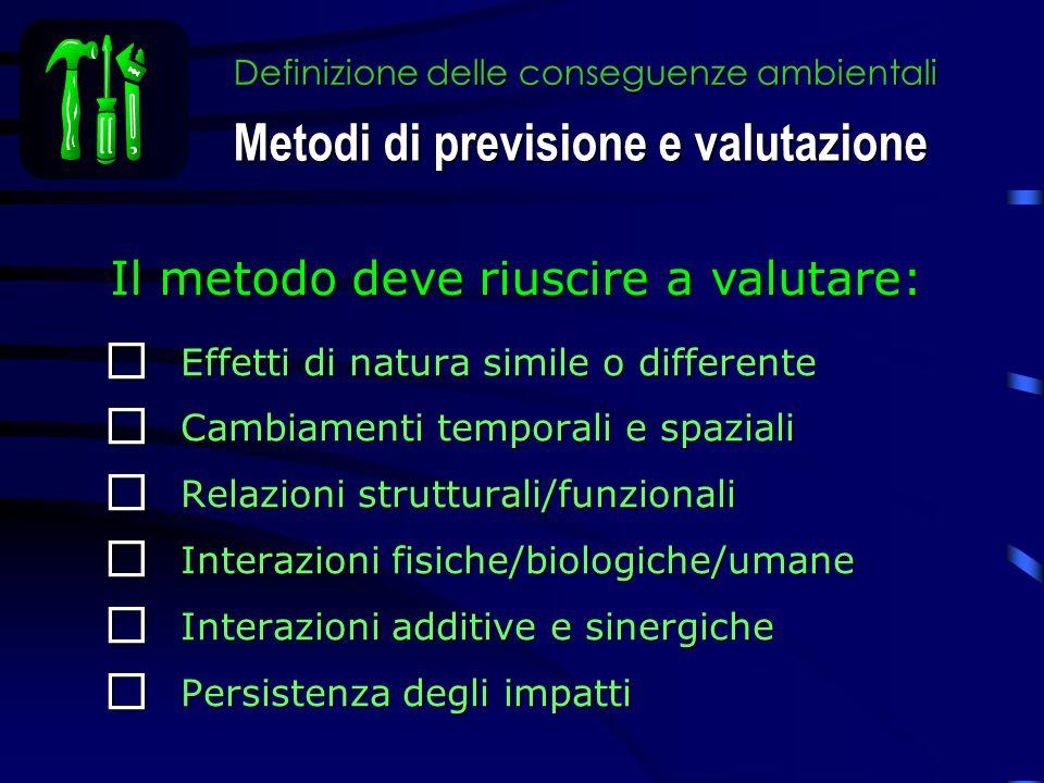 Definizione delle conseguenze ambientali Effetti di natura simile o differente Effetti di natura simile o differente Cambiamenti temporali e spaziali