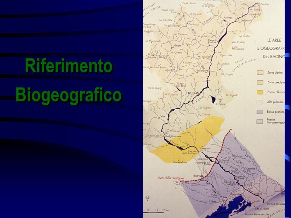 RiferimentoBiogeograficoRiferimentoBiogeografico