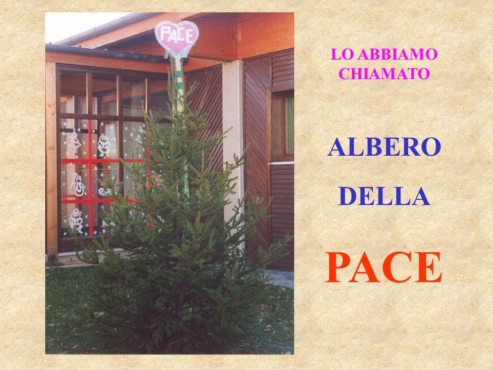 LO ABBIAMO CHIAMATO ALBERO DELLA PACE