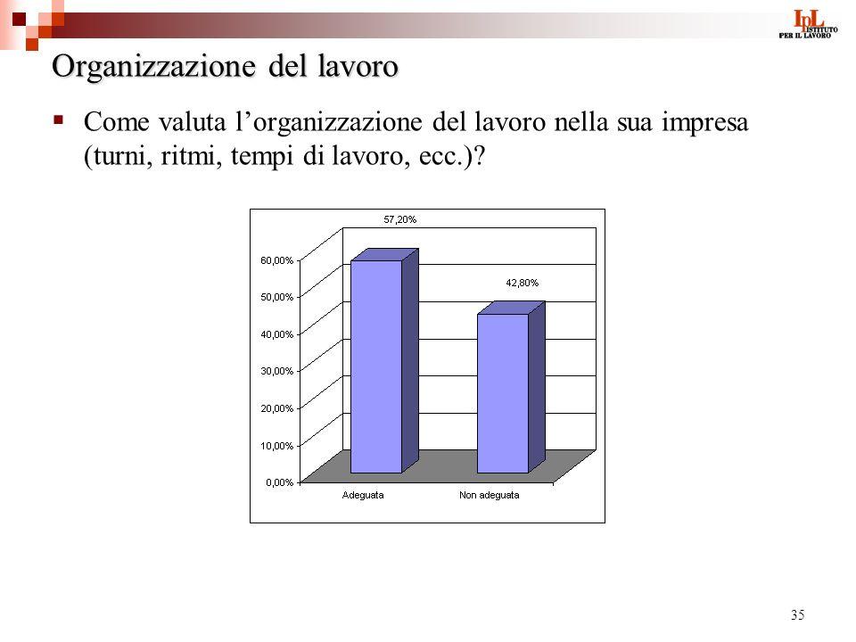 35 Organizzazione del lavoro Come valuta lorganizzazione del lavoro nella sua impresa (turni, ritmi, tempi di lavoro, ecc.)