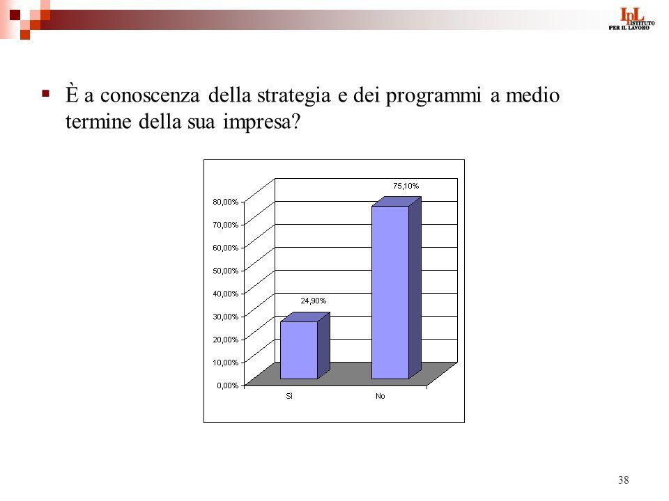 38 È a conoscenza della strategia e dei programmi a medio termine della sua impresa?