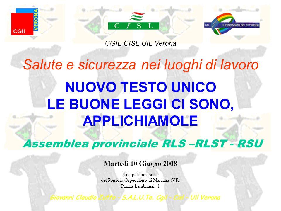 Giovanni Claudio Zuffo – Verona 10 giugno 2008 precisazione iniziale… Il D.Lgs.