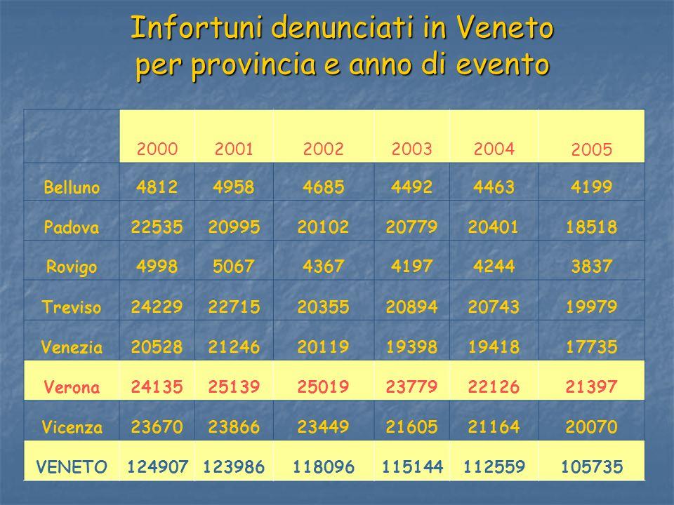 Infortuni denunciati in Veneto per provincia e anno di evento 200020012002200320042005 Belluno481249584685449244634199 Padova2253520995201022077920401