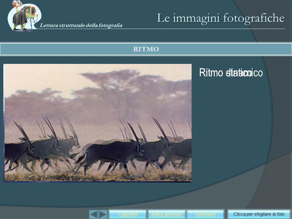 Le immagini fotografiche RITMO Clicca per sfogliare le fotoSommarioIndice generaleCopertina Ritmo staticoRitmo dinamico Lettura strutturale della foto