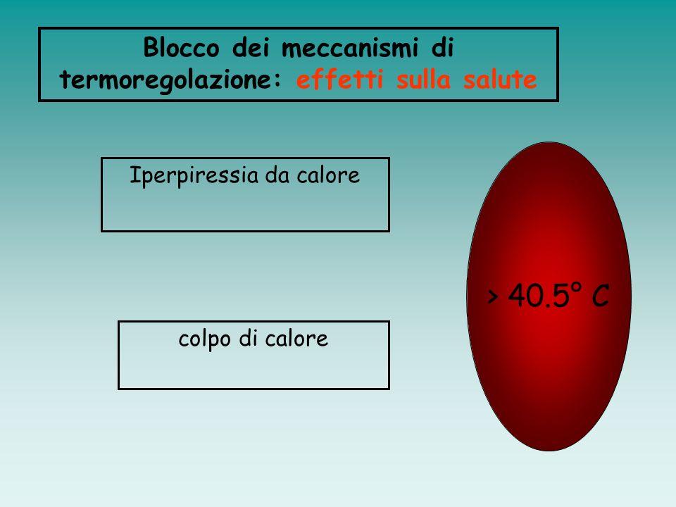 Contro lipotermia: vasocostrizione periferica; blocco della sudorazione; contrazioni muscolari involontarie (brividi) e volontarie MECCANISMI DI TERMO