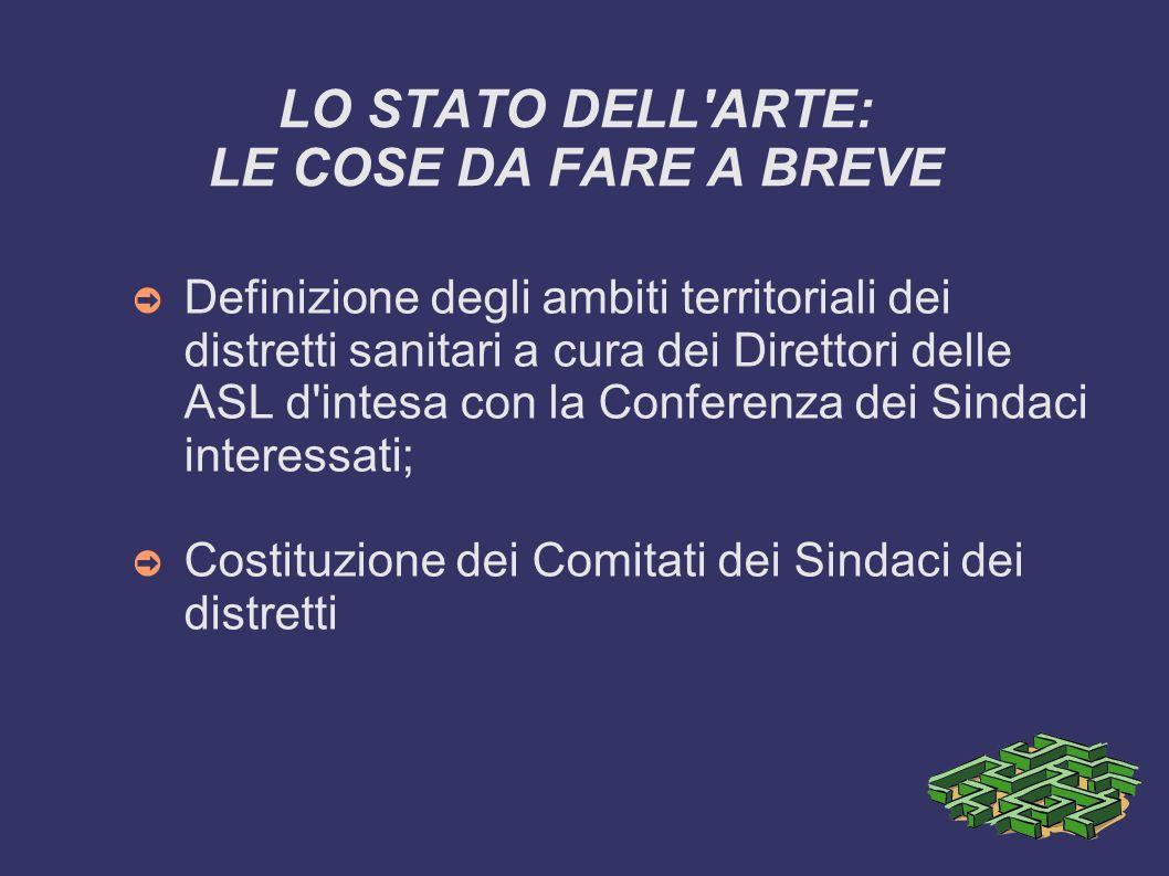 LO STATO DELL'ARTE: LE COSE DA FARE A BREVE Definizione degli ambiti territoriali dei distretti sanitari a cura dei Direttori delle ASL d'intesa con l