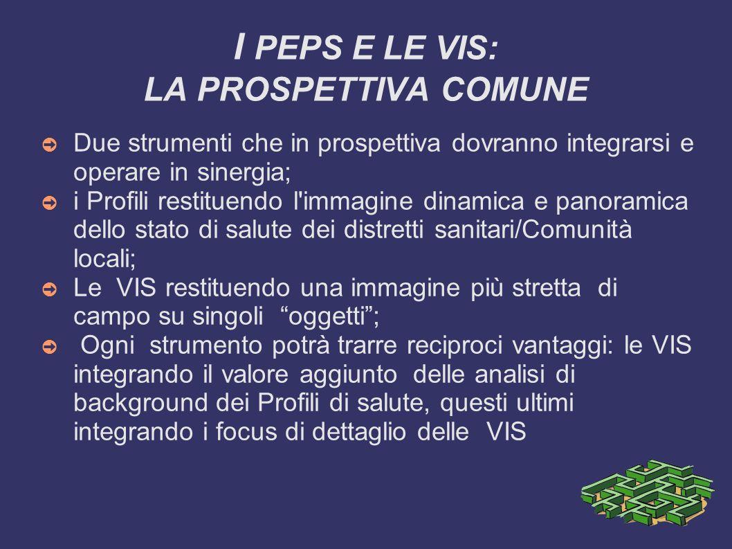 I PEPS E LE VIS: LA PROSPETTIVA COMUNE Due strumenti che in prospettiva dovranno integrarsi e operare in sinergia; i Profili restituendo l'immagine di