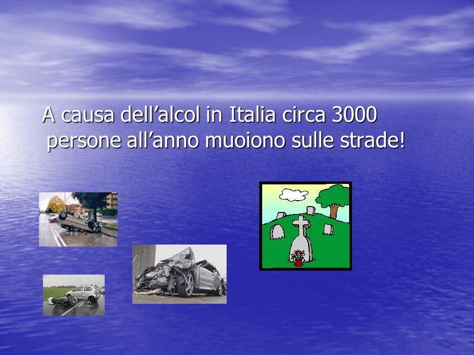 A causa dellalcol in Italia circa 3000 persone allanno muoiono sulle strade.