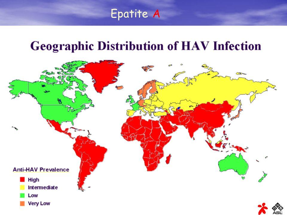 Epatite virale A: trasmissione Il virus dell epatite A si trova nelle feci delle persone con epatite A.