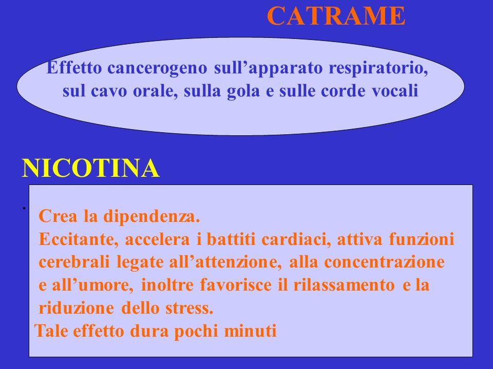 CATRAME NICOTINA.