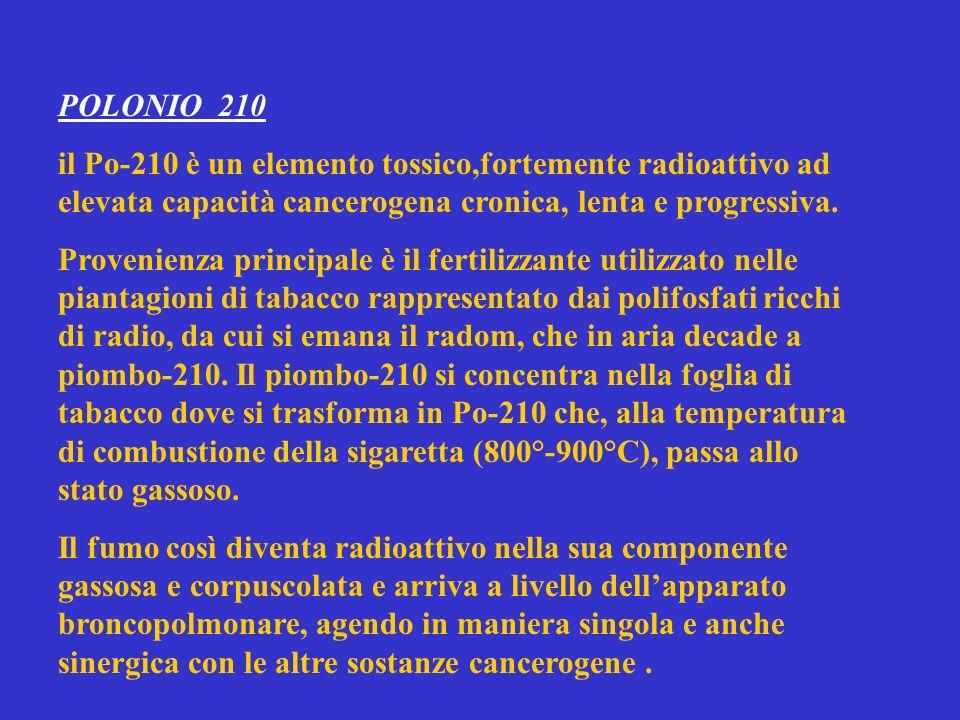 POLONIO 210 il Po-210 è un elemento tossico,fortemente radioattivo ad elevata capacità cancerogena cronica, lenta e progressiva.