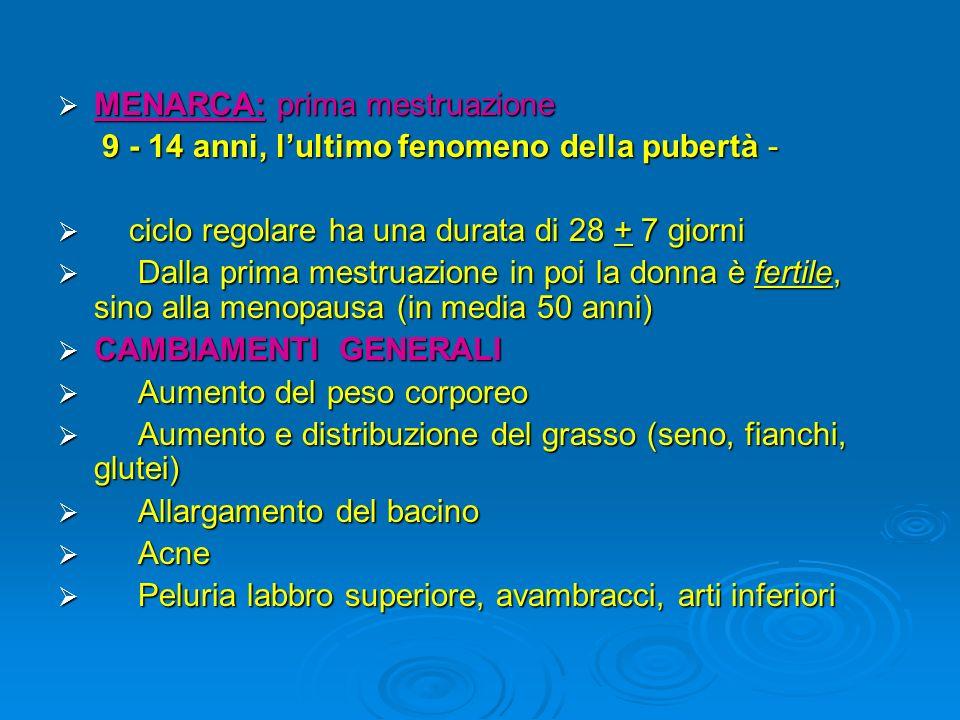 MENARCA: prima mestruazione MENARCA: prima mestruazione 9 - 14 anni, lultimo fenomeno della pubertà - 9 - 14 anni, lultimo fenomeno della pubertà - ci