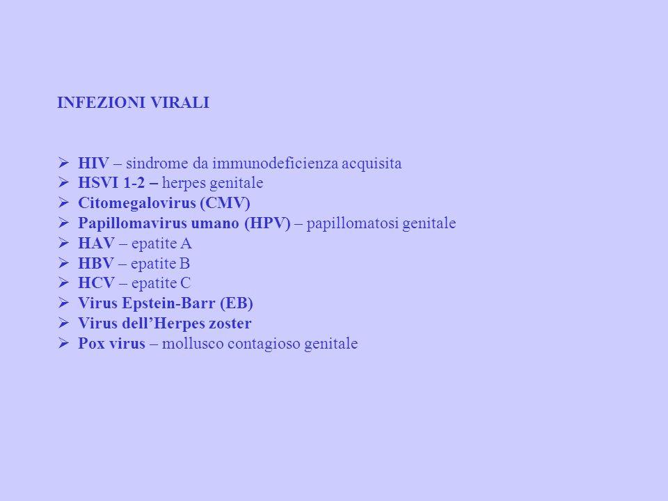 CLASSIFICAZIONE DELLE MST INFEZIONI BATTERICHE Treponema pallidum - sifilide Neisseria gonorrhoeae - gonorrea Clamydia trachomatis - linfogranuloma ve