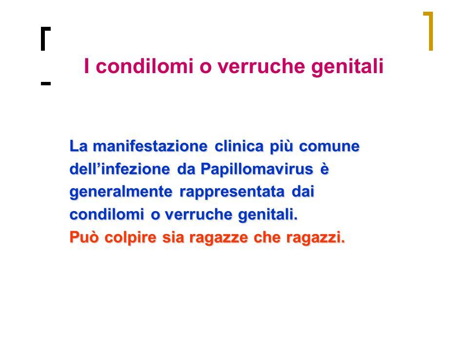 La manifestazione clinica più comune dellinfezione da Papillomavirus è generalmente rappresentata dai condilomi o verruche genitali. Può colpire sia r