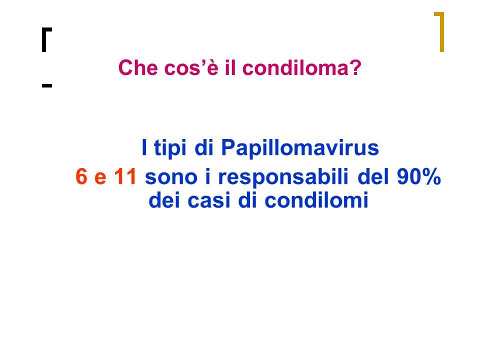 I tipi di Papillomavirus 6 e 11 sono i responsabili del 90% dei casi di condilomi Che cosè il condiloma?