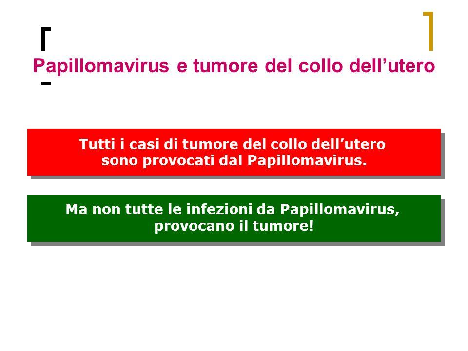 Papillomavirus e tumore del collo dellutero Ma non tutte le infezioni da Papillomavirus, provocano il tumore! Ma non tutte le infezioni da Papillomavi