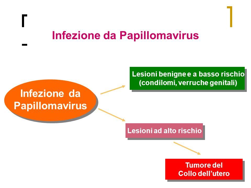 Infezione da Papillomavirus Infezione da Papillomavirus Lesioni ad alto rischio Lesioni benigne e a basso rischio (condilomi, verruche genitali) Lesio