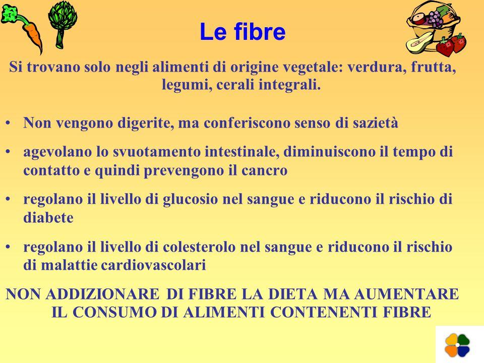Le fibre Si trovano solo negli alimenti di origine vegetale: verdura, frutta, legumi, cerali integrali. Non vengono digerite, ma conferiscono senso di