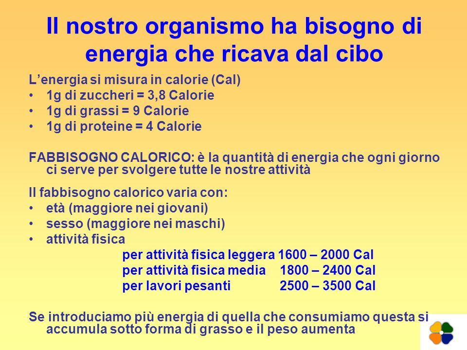 Il nostro organismo ha bisogno di energia che ricava dal cibo Lenergia si misura in calorie (Cal) 1g di zuccheri = 3,8 Calorie 1g di grassi = 9 Calori