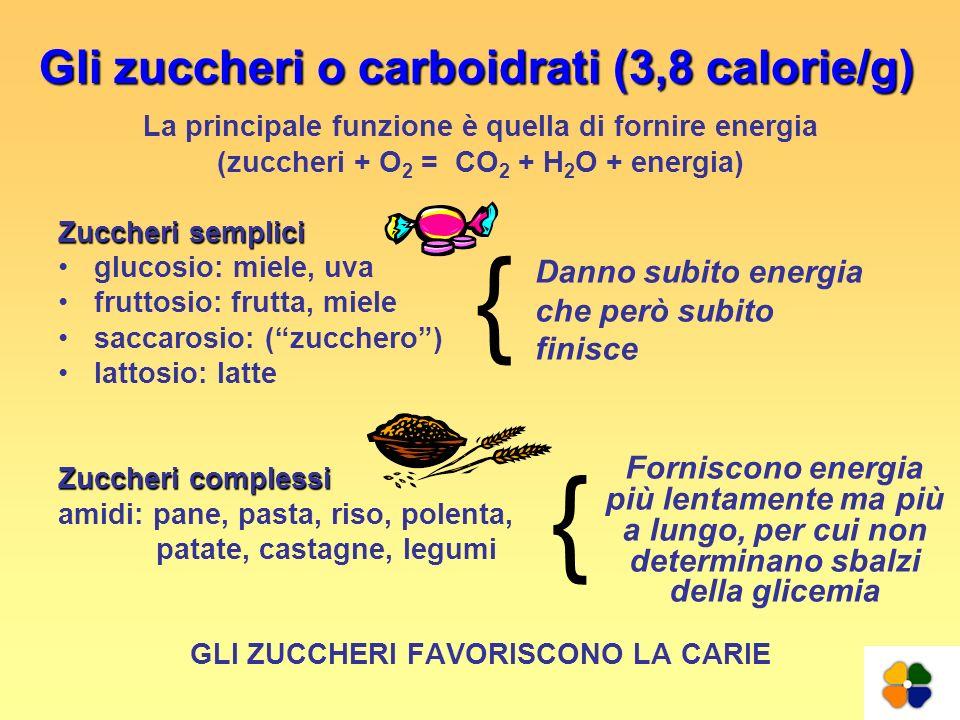 Gli zuccheri o carboidrati (3,8 calorie/g) La principale funzione è quella di fornire energia (zuccheri + O 2 = CO 2 + H 2 O + energia) Zuccheri sempl