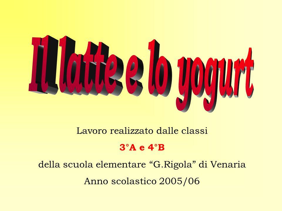 Lavoro realizzato dalle classi 3°A e 4°B della scuola elementare G.Rigola di Venaria Anno scolastico 2005/06