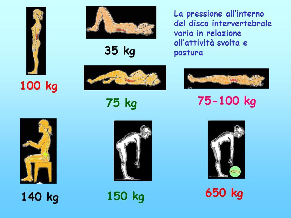 100 kg 75 kg 75-100 kg 35 kg 150 kg 20Kg 650 kg 140 kg La pressione allinterno del disco intervertebrale varia in relazione allattività svolta e postu