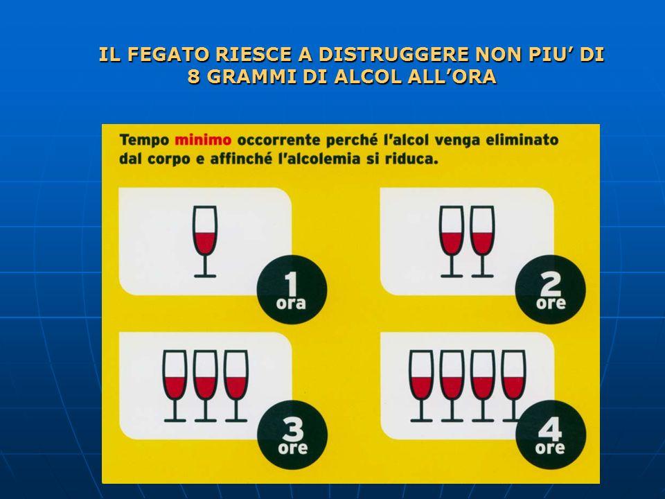 IL FEGATO RIESCE A DISTRUGGERE NON PIU DI 8 GRAMMI DI ALCOL ALLORA 8 GRAMMI DI ALCOL ALLORA