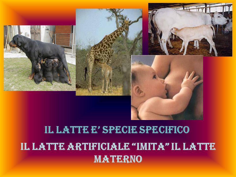 IL LATTE E SPECIE SPECIFICO Il latte artificiale IMITA il latte materno
