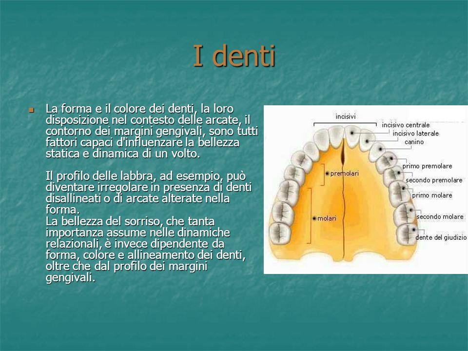 La bocca 1. Nella bocca è situata la lingua, un muscolo mobile, attaccato posteriormente ad un piccolo osso (iode) e anteriormente, alla base della bo