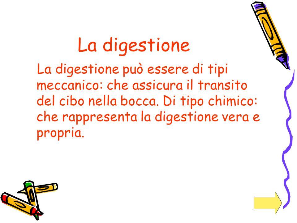 La digestione La digestione può essere di tipi meccanico: che assicura il transito del cibo nella bocca. Di tipo chimico: che rappresenta la digestion